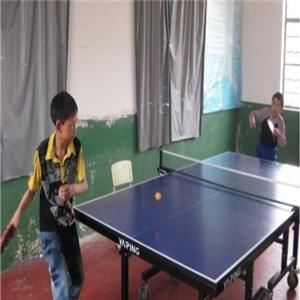 乒乓球教练培训