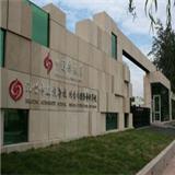 國際藝術學校