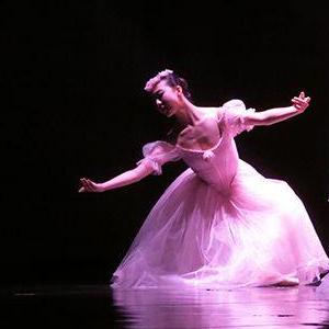 红菱舞蹈艺术诚邀加盟