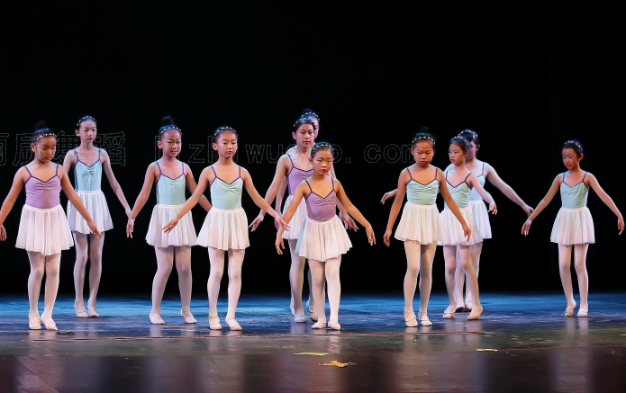 丽质舞蹈加盟