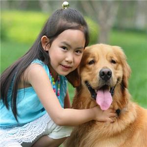 巴米哥宠物护理