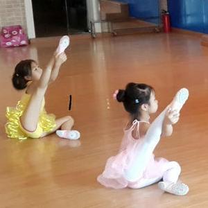 艺杨舞蹈培训诚邀加盟