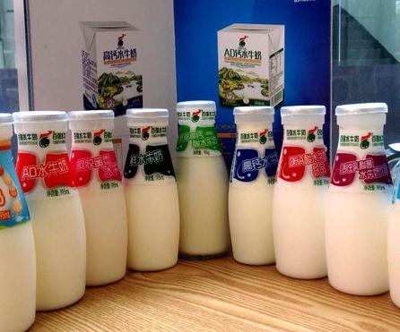 百强水牛奶加盟图片