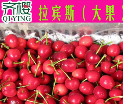 齐樱生鲜水果