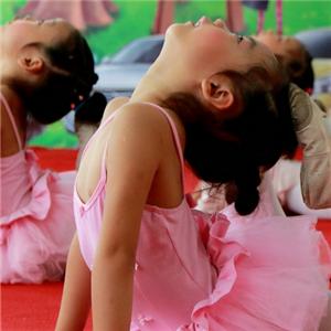 白孔雀舞蹈加盟图片