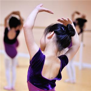 左马艺术舞蹈培训健身
