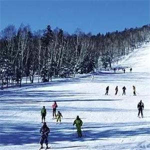 石京龍滑雪場