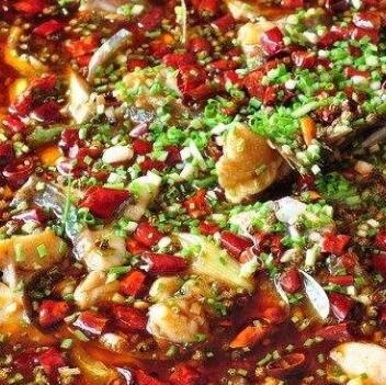 小四川酸菜鱼加盟图片