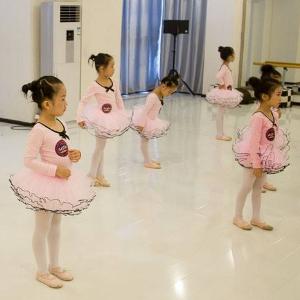 艾舞舞蹈培训加盟图片
