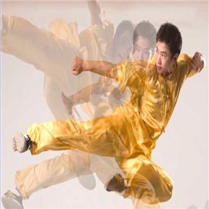东方鹤武术健身