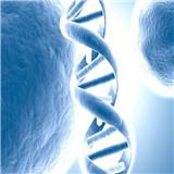 慧眼基因检测