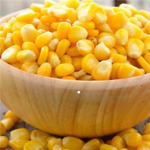 金丝玉米 粗粮细作加盟