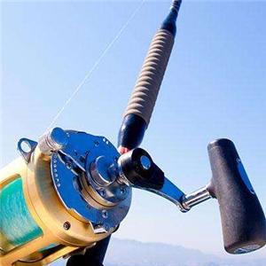 龙纹鲤渔具加盟图片