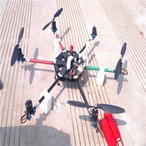 飞力特模型加盟图片