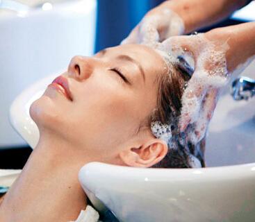 琴叶洗发水加盟图片