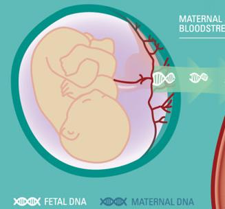 胎儿无创基因检测