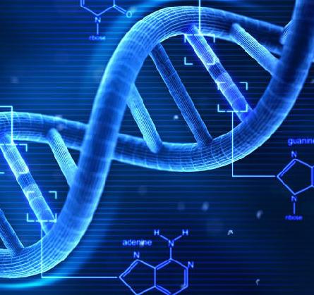 肿瘤基因检测加盟图片