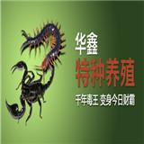华鑫蜈蚣养殖