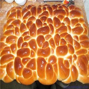 赵佳亿老面包