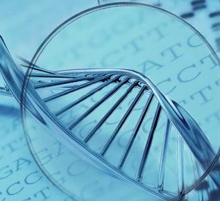 仁至科技基因加盟图片