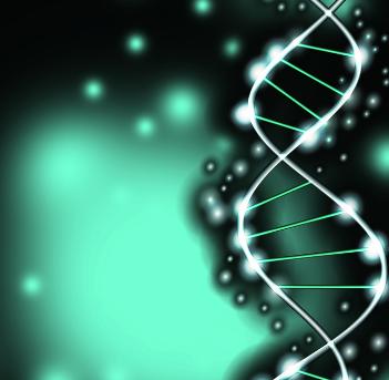 23life基因加盟图片