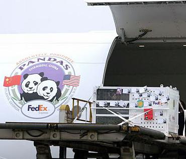 熊猫快运加盟图片