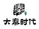 大秦傳媒廣告投放