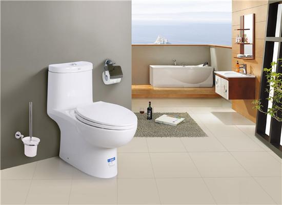 帝富龙卫浴——马桶
