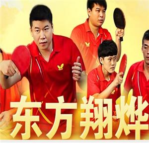 东方翔烨乒乓球教育
