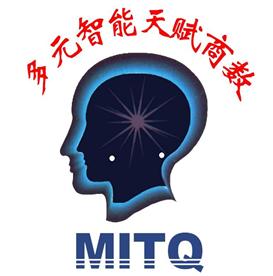 皮纹检测台灣MITQ多元智能