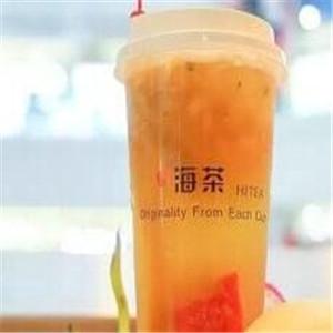 hitea海茶