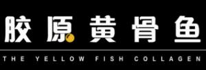 人鱼座胶原黄骨鱼