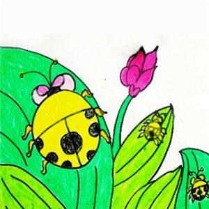 七星瓢虫儿童画加盟介绍