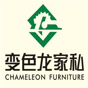 变色龙家具