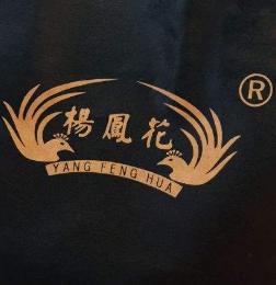 杨凤花胡辣汤