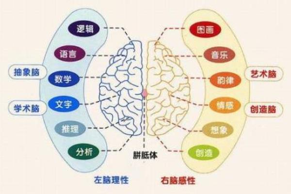 脑动力加盟