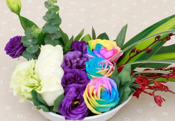 七彩鲜花加盟