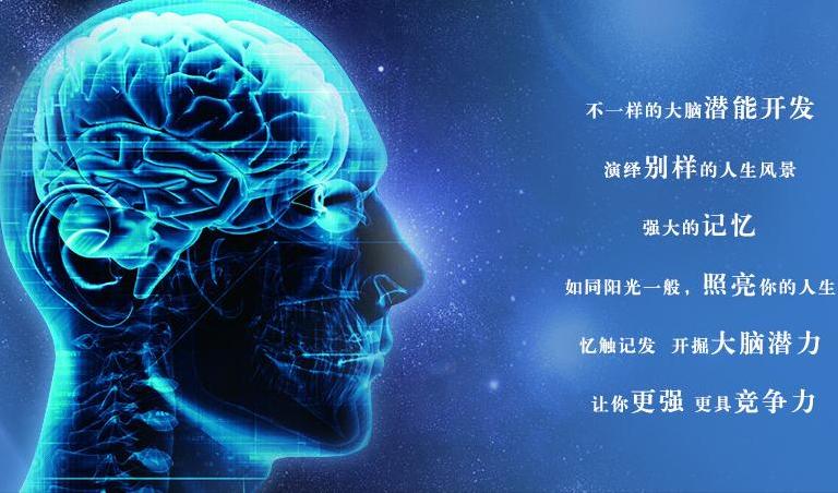 全脑开发加盟