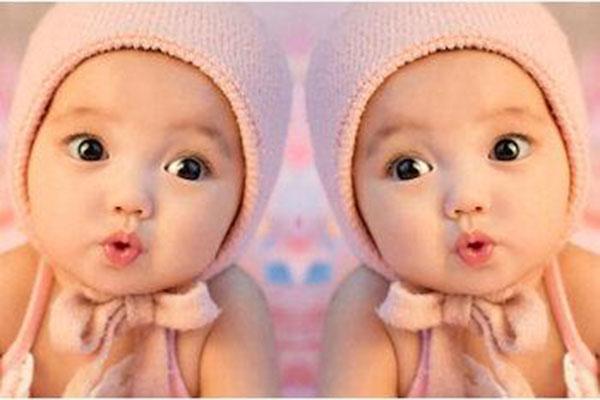 娃娃愛加盟