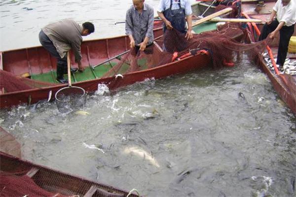 歐魄漁具加盟
