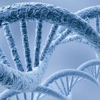 基因檢測加盟