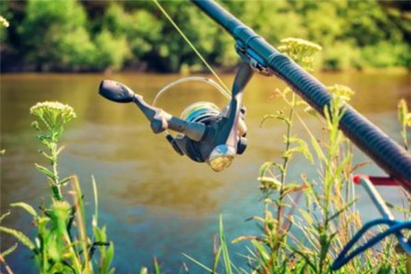 戴家渔具加盟