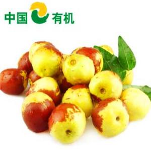 中國有機綠色食品