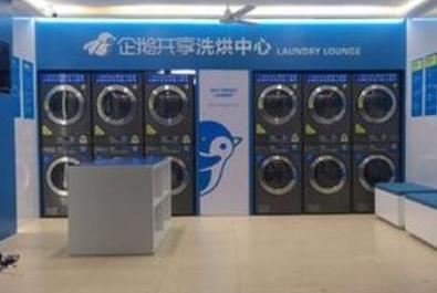 企鵝共享洗衣機加盟