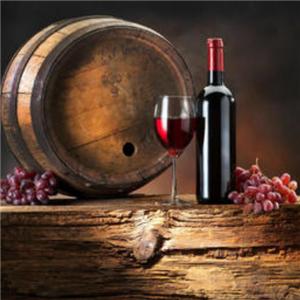 卡斯黛乐葡萄酒加盟