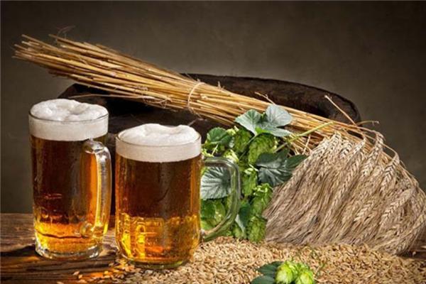xuehua啤酒加盟