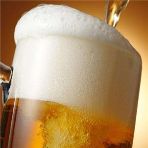 威仕特釀啤酒加盟
