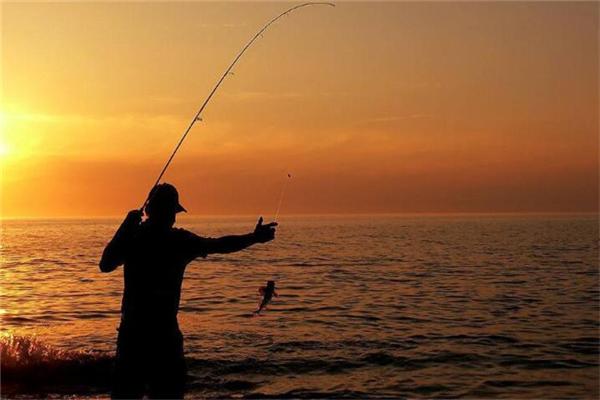 化紹新釣魚用品加盟