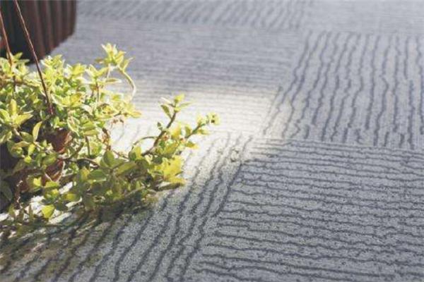 約克郡地毯加盟