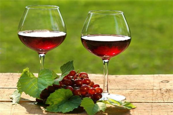 洛特古堡葡萄酒加盟